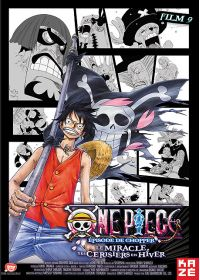 One Piece - Le Film 9 : Episode de Chopper : Le miracle des Cerisiers en Hiver - DVD