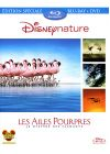 Les Ailes pourpres : le myst�re des flamants (Combo Blu-ray + DVD) - Blu-ray